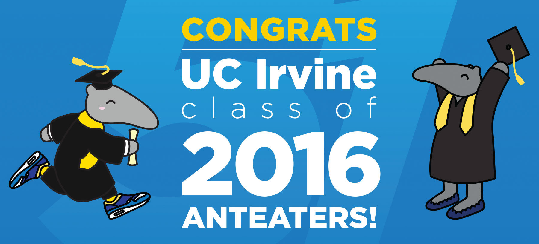 Congratulations, Class of 2016 Anteaters!